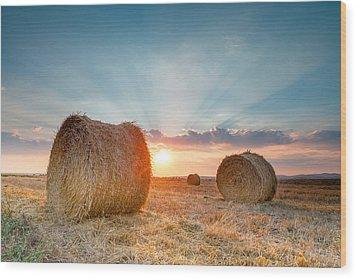 Sunset Bales Wood Print by Evgeni Dinev