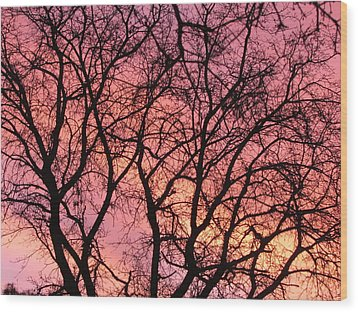 Sunset Behind The Trees Wood Print by Debra Madonna