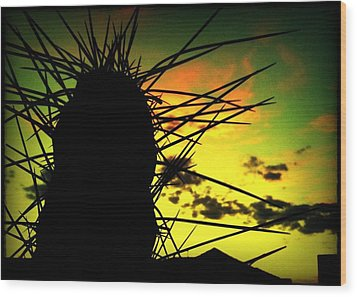 Sunset Cactus Wood Print by Milton Thompson