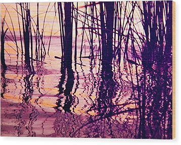 Sunset Cattails Wood Print
