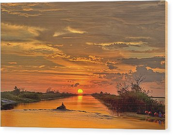 Sunset Everglades Wood Print by Bob Mulligan