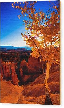 Sunset Fall Wood Print by Chad Dutson