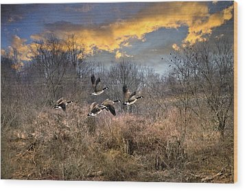 Sunset Geese Wood Print by Christina Rollo