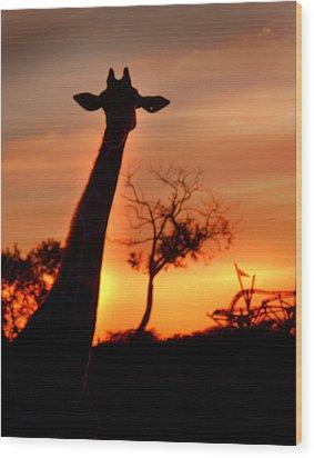 Sunset Giraffe Wood Print