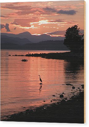 Sunset Heron Wood Print by Brian Chase