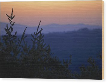 Sunset In California Wood Print