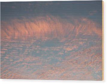 Wood Print featuring the photograph Sunset In Gainesville by Lorna Maza
