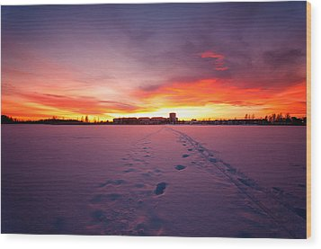 Sunset In Karlstad Sweden. Wood Print by Micael  Carlsson