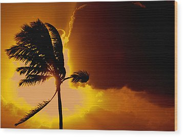 Sunset In Long Island Wood Print by Victor Minca