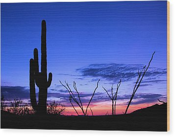 Wood Print featuring the photograph Sunset In Saguaro National Park by Elizabeth Budd