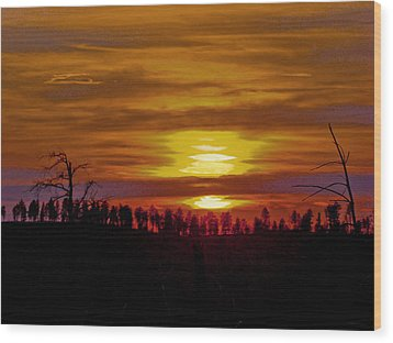 Wood Print featuring the photograph Sunset In The Black Hills 2 by Cathy Anderson