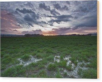 Sunset In The Swamp Wood Print by Eti Reid