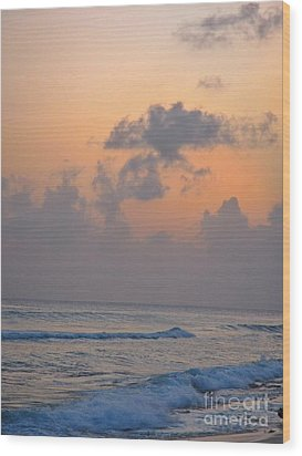 Sunset In The Tropics Wood Print by John Malone
