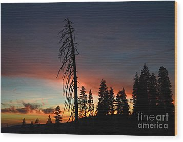 Sunset In Yosemite Wood Print