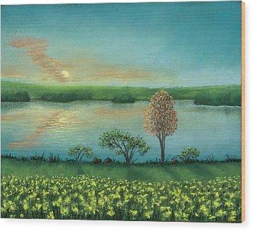 Sunset Lake B Wood Print