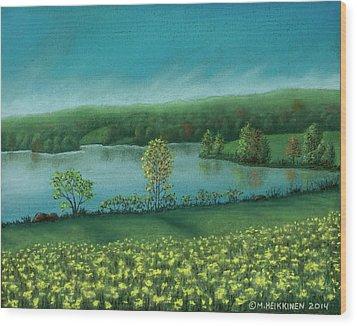 Sunset Lake C Wood Print