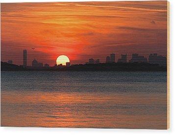 Sunset Landing Wood Print by Lee Costa