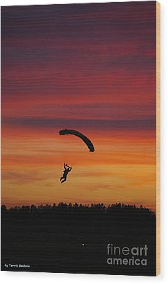 Wood Print featuring the photograph Sunset Landing by Tannis  Baldwin
