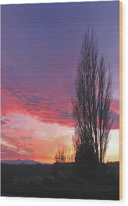 Wood Print featuring the photograph Sunset by Laurie Stewart
