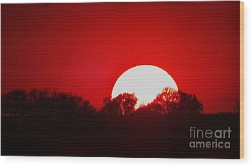Sunset May Wood Print