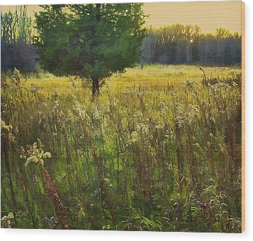 Wood Print featuring the photograph Sunset Meadow by John Hansen