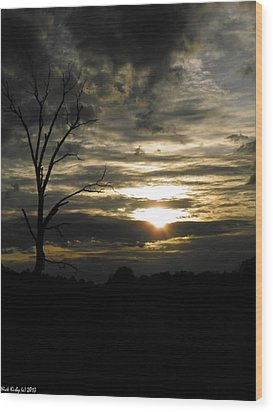 Sunset Of Life Wood Print