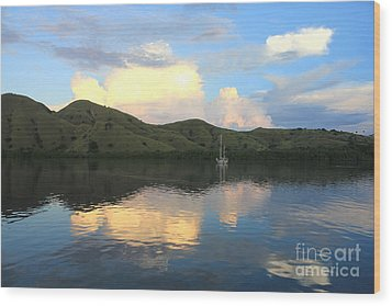 Wood Print featuring the photograph Sunset On Komodo by Sergey Lukashin
