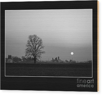 Sunset On The Farm Wood Print by Vilas Malankar
