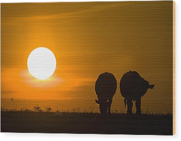 Sunset On The Flint Hills Wood Print by Scott Bean