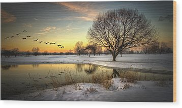 Sunset On The Golf Course Wood Print by Laura James