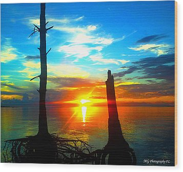Sunset On The Island Wood Print