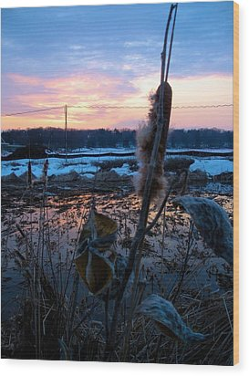 Wood Print featuring the photograph Sunset On The Pond by Zafer Gurel