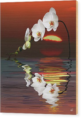 Sunset Orchids Wood Print by Angela A Stanton