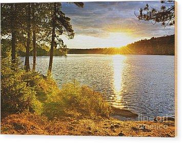 Sunset Over Lake Wood Print by Elena Elisseeva
