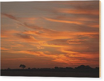 Sunset Over North Norfolk Wood Print by Paul Lilley