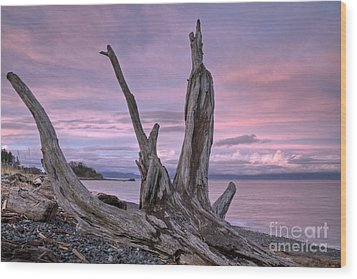 Wood Print featuring the photograph Sunset Over The Salish Sea by Inge Riis McDonald