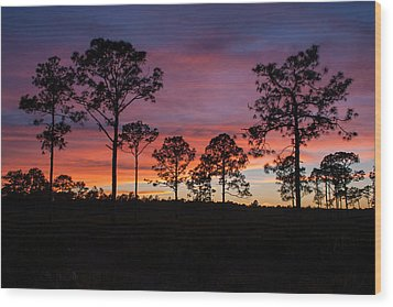 Wood Print featuring the photograph Sunset Pines by Paul Rebmann