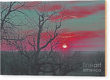 Sunset Red Wood Print by Renie Rutten