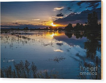 Sunset Reflections Wood Print by Steven Reed