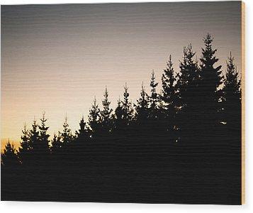 Sunset Wood Print by Robert Hellstrom