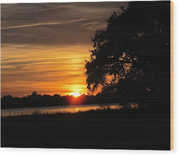 Sunset Shadowed Oak Wood Print by Joetta Beauford
