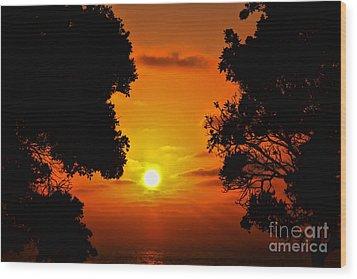 Sunset Silhouette By Diana Sainz Wood Print by Diana Sainz