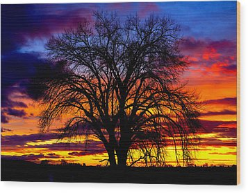 Sunset Silhouette Wood Print by Greg Norrell