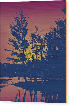 Sunset Silhouette Wood Print by Larry Capra