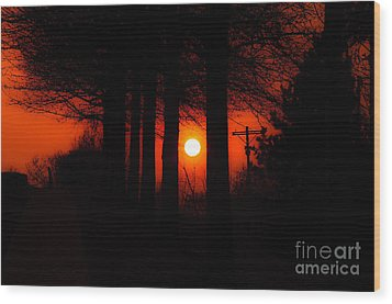 Sunset Silhouette Painterly Wood Print by Andee Design