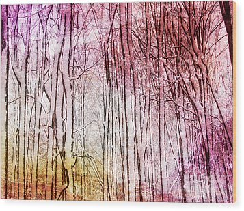 Sunset Snow Twigs Wood Print