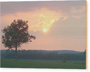 Sunset Sorbet Wood Print