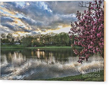 Sunset Southern  Wood Print by Chuck Kuhn