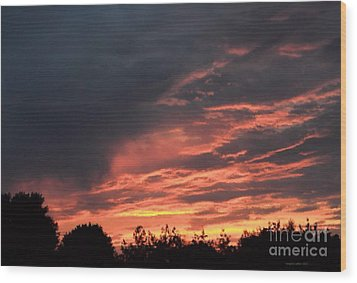 Wood Print featuring the photograph Sunset Streaks by Luther Fine Art