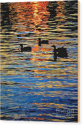 Sunset Swim Wood Print